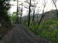 険しい林道