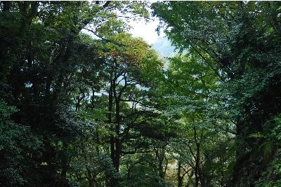 玄武洞公園1