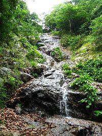 市野々の滝2