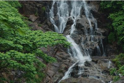 今福の滝3