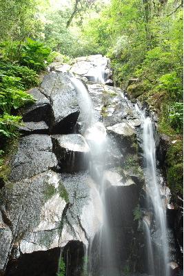 金引の滝6