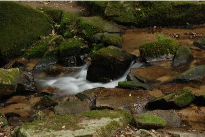 金引の滝3