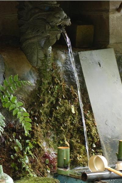 天長の湧き水2