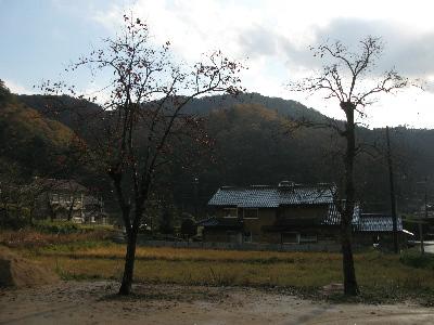 三原区の風景3.jpg