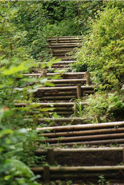 散歩道への階段