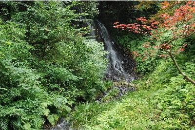 黒い岩肌を勢いよく落ちる滝