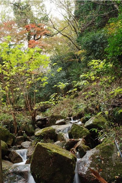 奥山の自然体験村3.jpg