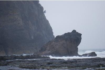 shibayama22210b.jpg