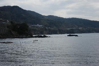 shiroshima4.jpg
