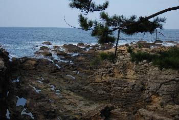shiroshima6.jpg