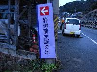shizuka7.jpg