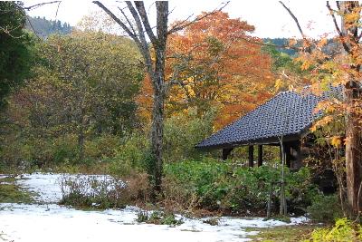 紅葉と雪.jpg