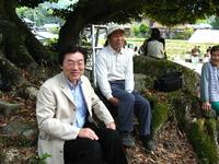 菖蒲田植え8