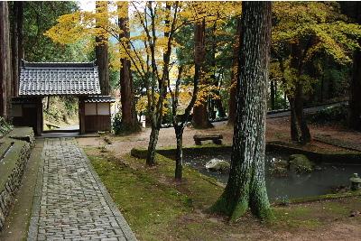 宗雲寺庭園3.jpg