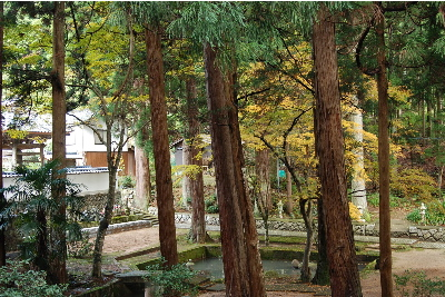 秋の宗雲寺3.jpg