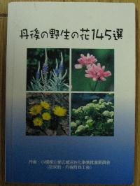 yasei2243.jpg