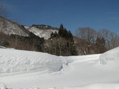 yukinonaka23216d.jpg