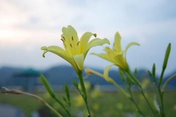 yusuge4.jpg