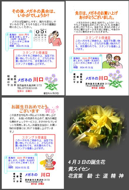 dm2443a.jpg