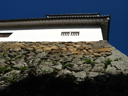 hikone23102714.jpg