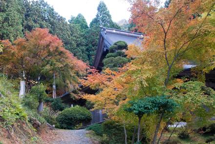 mantokuji2511d.jpg