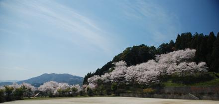 otokoyama24325a.jpg