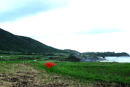 sodeshi2410p.jpg